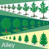 在胡同的绿色树 库存照片
