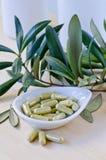 在胶囊的橄榄色的叶子萃取物 饮食补充条款 免版税库存照片