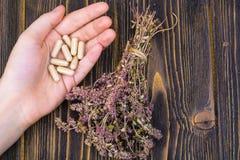 在胶囊的草药从在您的健康生活的手棕榈的草本  库存照片