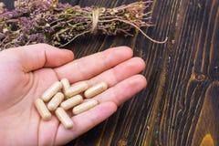 在胶囊的草药从在您的健康生活的手棕榈的草本  免版税库存照片