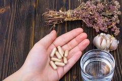 在胶囊的草药从在您的健康生活的手棕榈的草本  库存图片