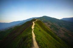 在脊椎的路和用有柔和的谷的绿叶盖的山的上面在黎明 库存照片