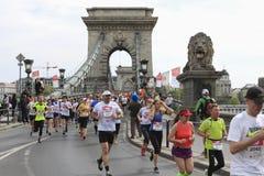 在脊椎Bridhe的赛跑者在布达佩斯,匈牙利,马拉松2016年4月17日 免版税库存图片