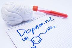 在脑子的神经传送体多巴胺 解剖3D脑子模型、实验室试验管有血液的和笔记,在哪里书面多巴胺的标题 图库摄影