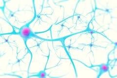 在脑子的神经元在与焦点作用的白色背景 3d例证 免版税图库摄影