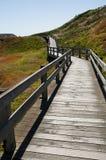 在腓力普海岛上的木板走道 免版税库存图片