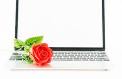 在膝上型计算机的红色玫瑰在白色 库存图片