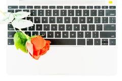 在膝上型计算机的红色玫瑰在白色 库存照片