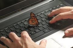 在膝上型计算机键盘和生态能量的黑脉金斑蝶 库存照片
