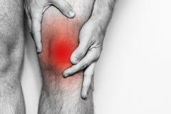 在膝盖关节的剧痛,特写镜头 单色图象,在白色背景 红颜色痛苦地区  免版税图库摄影