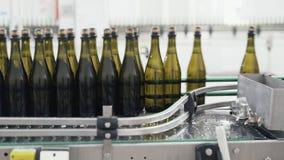 在自动传动机线的玻璃瓶在香槟或酒工厂 装瓶的酒精饮料植物 股票视频