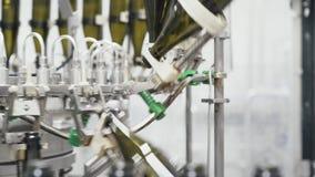 在自动传动机线的玻璃瓶在香槟或酒工厂 装瓶的酒精饮料植物 影视素材