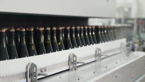 在自动传动机线的玻璃瓶在香槟或酒工厂 装瓶的酒精饮料植物 股票录像