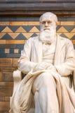 在自然历史博物馆的查尔斯・达尔文先生雕象在伦敦,英国 库存照片