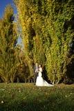 在自然图片的亚洲婚礼夫妇 免版税库存图片