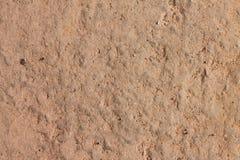 在自然地面的表面纹理 免版税库存照片