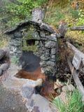 在自然温泉的岩石风雨棚 免版税图库摄影