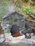 在自然温泉的岩石风雨棚 图库摄影