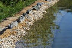 在自然游泳池塘或水池NSP银行的岩石  免版税图库摄影