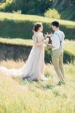 在自然的婚礼夫妇 拥抱在婚礼的新娘和新郎 库存图片