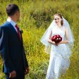 在自然的婚姻的步行 库存图片