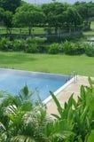 在自然的游泳池 免版税图库摄影