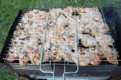 在自然的烤肉,在火的烤猪肉 免版税库存图片