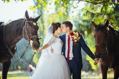 在自然的美好的夏天婚礼步行 库存照片