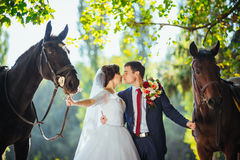 在自然的美好的夏天婚礼步行 库存图片