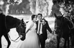 在自然的美好的夏天婚礼步行 免版税图库摄影