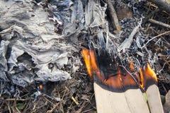 在自然的营火 免版税库存图片