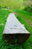 在自然的长凳 库存图片