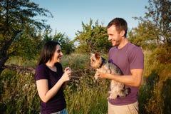 在自然的年轻愉快的夫妇,男孩给女孩一条狗-作为礼物的约克夏狗 免版税库存图片