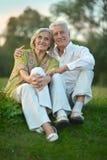 在自然的年长夫妇在夏天 免版税库存图片