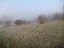 在自然的Misfy冷淡的秋天早晨 库存图片
