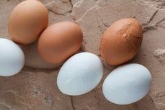 在自然石头的破裂的鸡蛋 免版税图库摄影