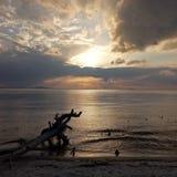 在自然秀丽的海滩的日落 库存图片