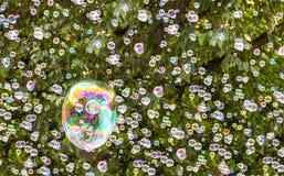 在自然绿色背景的许多呈虹彩肥皂泡 免版税库存图片