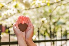 在自然绿色bokeh太阳光火光和迷离叶子摘要背景的女性手心形 愉快的爱和自由概念 免版税库存图片
