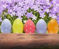在自然背景的五颜六色的复活节彩蛋 库存图片