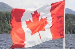 在自然背景的加拿大旗子 免版税库存图片