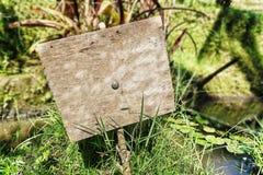 在自然背景isoliated的老木牌 库存照片