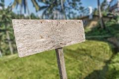 在自然背景isoliated的老木牌 免版税库存照片