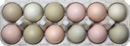 在自然颜色的新鲜的有机鸡蛋 库存图片