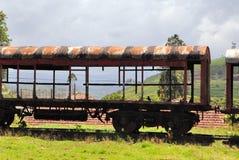 在自然风景,斯里兰卡的老列车车箱 库存图片