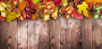 在自然黑暗的木背景的秋叶 老肮脏的木桌或木条地板 库存照片