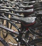 在自行车商店在雨以后的纽约 库存图片