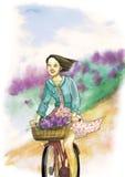 在自行车的女孩乘驾 五颜六色的例证 拉长的例证 任意 春天 免版税库存图片