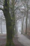 在自行车的孤独姿态在有薄雾的轨道在Zei附近的荷兰森林里 库存图片