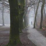 在自行车的孤独姿态在有薄雾的轨道在Zei附近的荷兰森林里 免版税图库摄影